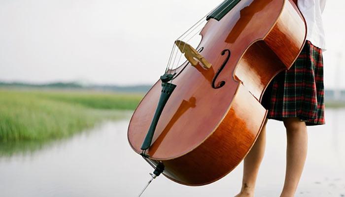 بهترین آموزشگاه موسیقی در کرج-آموزش ویولنسل