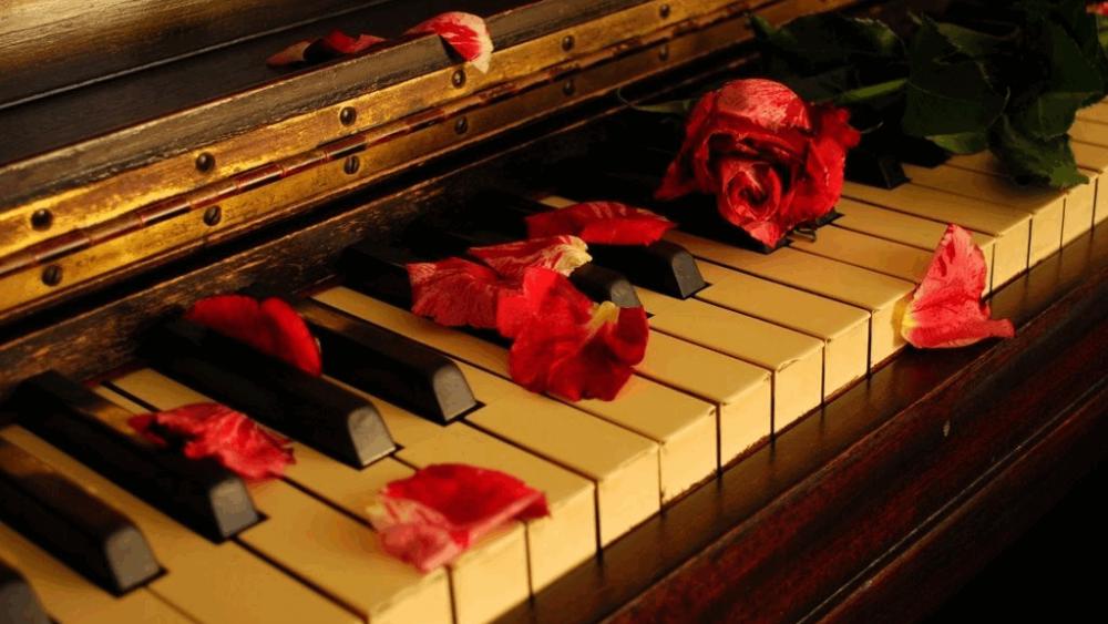 بهترین آموزشگاه موسیقی در کرج-پیانو